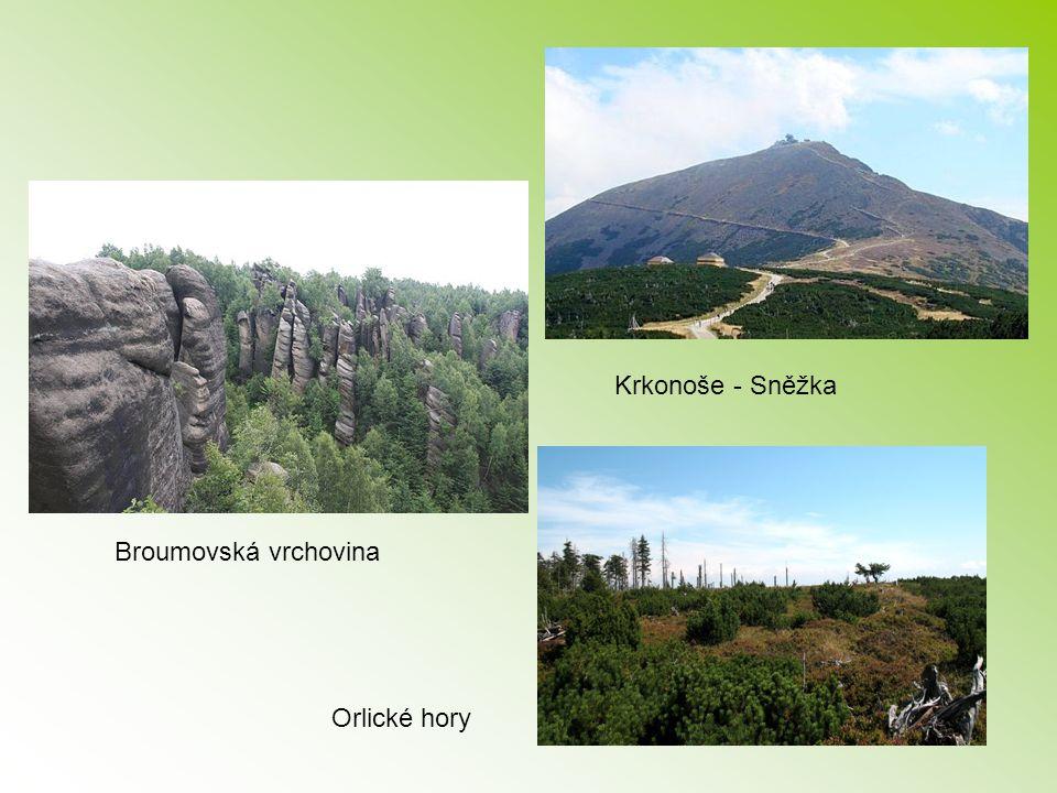 Krkonoše - Sněžka Broumovská vrchovina Orlické hory