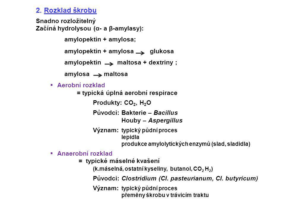 amylopektin + amylosa;