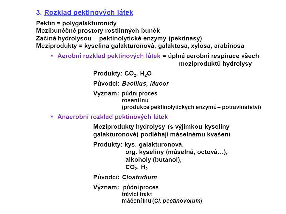 3. Rozklad pektinových látek