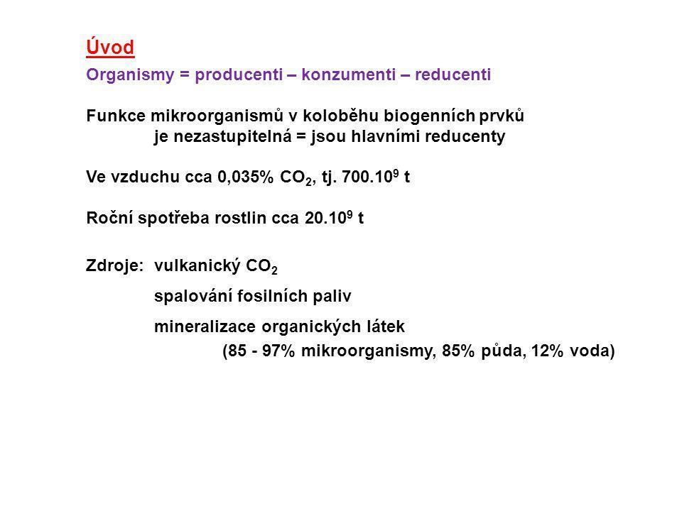 Úvod Organismy = producenti – konzumenti – reducenti. Funkce mikroorganismů v koloběhu biogenních prvků.