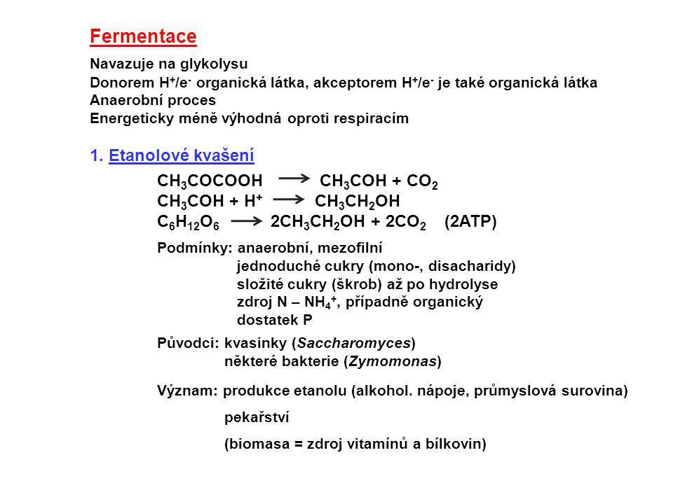 Podmínky: anaerobní, mezofilní