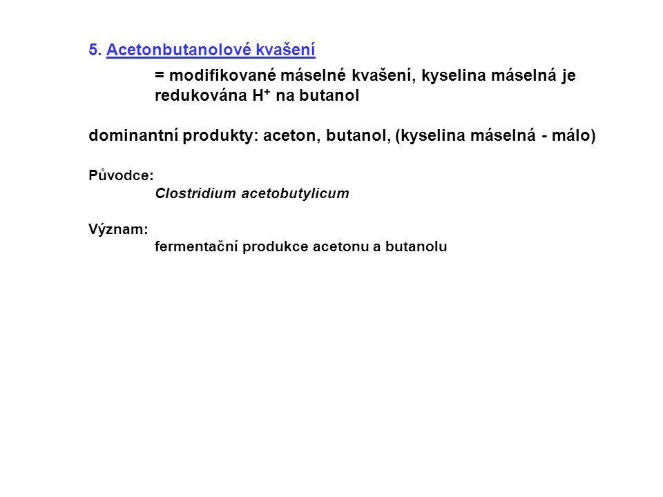 5. Acetonbutanolové kvašení