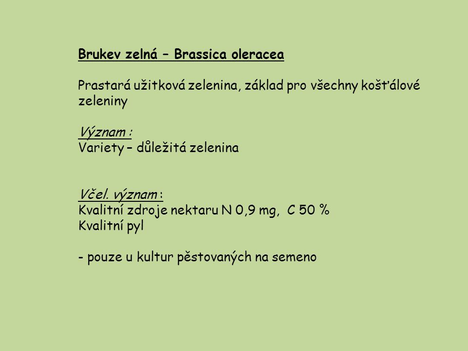 Brukev zelná – Brassica oleracea