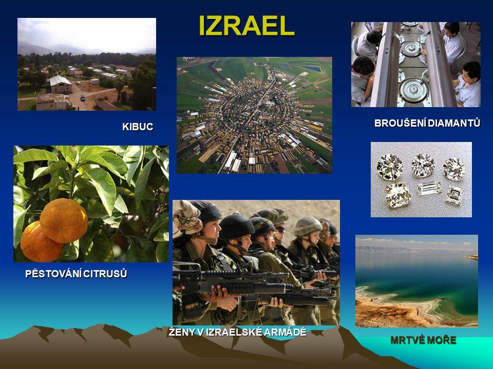 IZRAEL BROUŠENÍ DIAMANTŮ KIBUC PĚSTOVÁNÍ CITRUSŮ