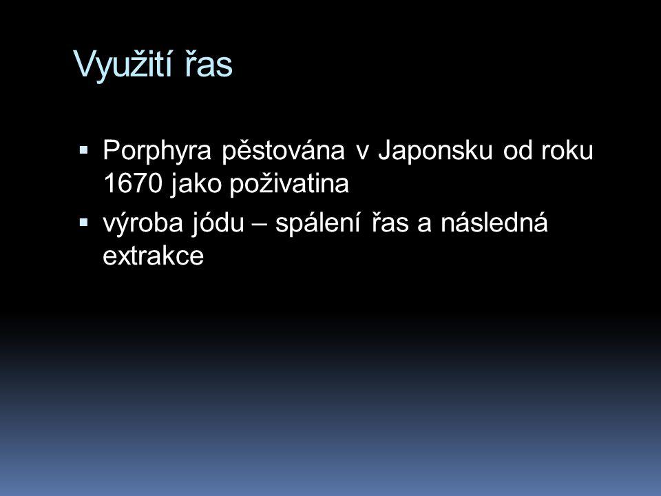 Využití řas Porphyra pěstována v Japonsku od roku 1670 jako poživatina