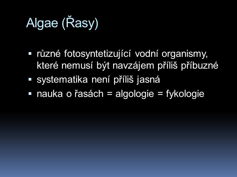 Algae (Řasy) různé fotosyntetizující vodní organismy, které nemusí být navzájem příliš příbuzné. systematika není příliš jasná.