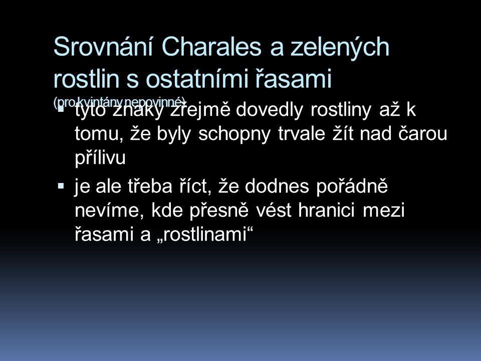 Srovnání Charales a zelených rostlin s ostatními řasami (pro kvintány nepovinné)