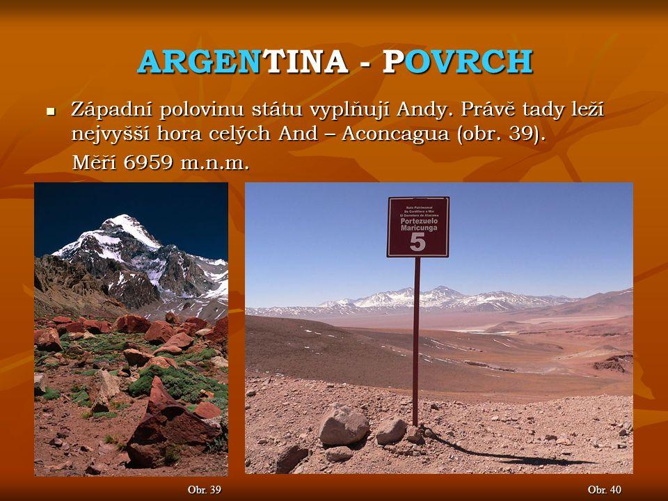 ARGENTINA - POVRCH Západní polovinu státu vyplňují Andy. Právě tady leží nejvyšší hora celých And – Aconcagua (obr. 39).
