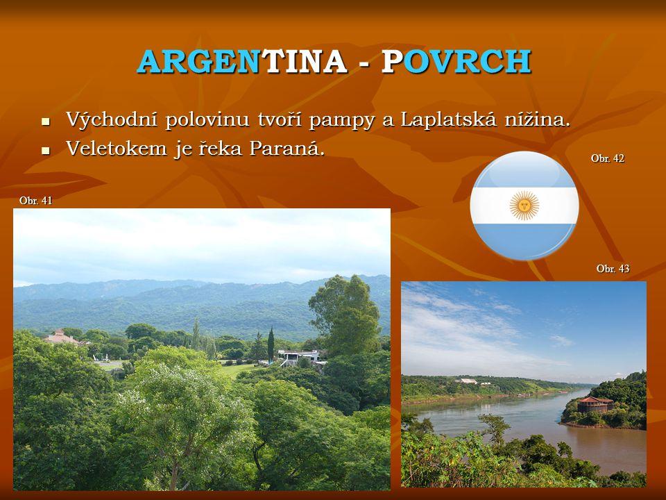 ARGENTINA - POVRCH Východní polovinu tvoří pampy a Laplatská nížina.