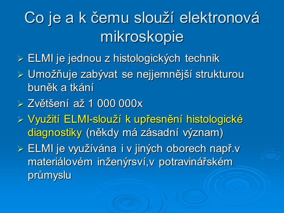 Co je a k čemu slouží elektronová mikroskopie