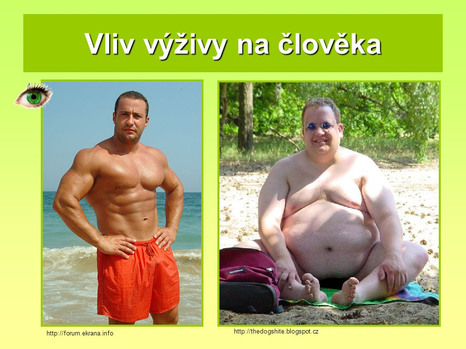 Vliv výživy na člověka http://thedogshite.blogspot.cz