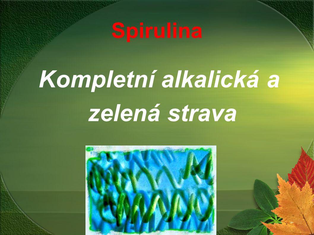 Kompletní alkalická a zelená strava