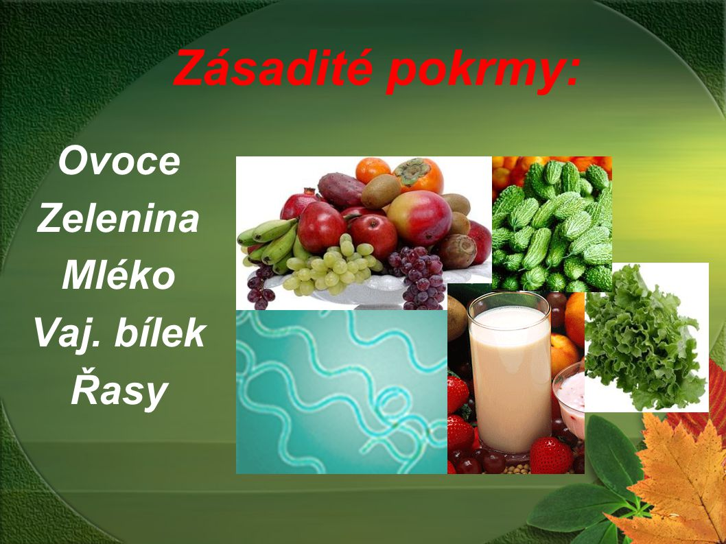 Ovoce Zelenina Mléko Vaj. bílek Řasy