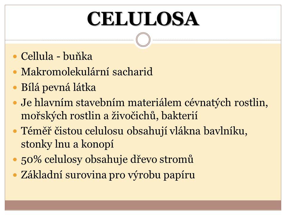 CELULOSA Cellula - buňka Makromolekulární sacharid Bílá pevná látka