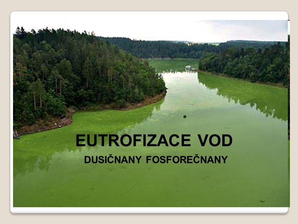 EUTROFIZACE VOD EUTROFIZACE VOD Fosforečnany, dusičnany