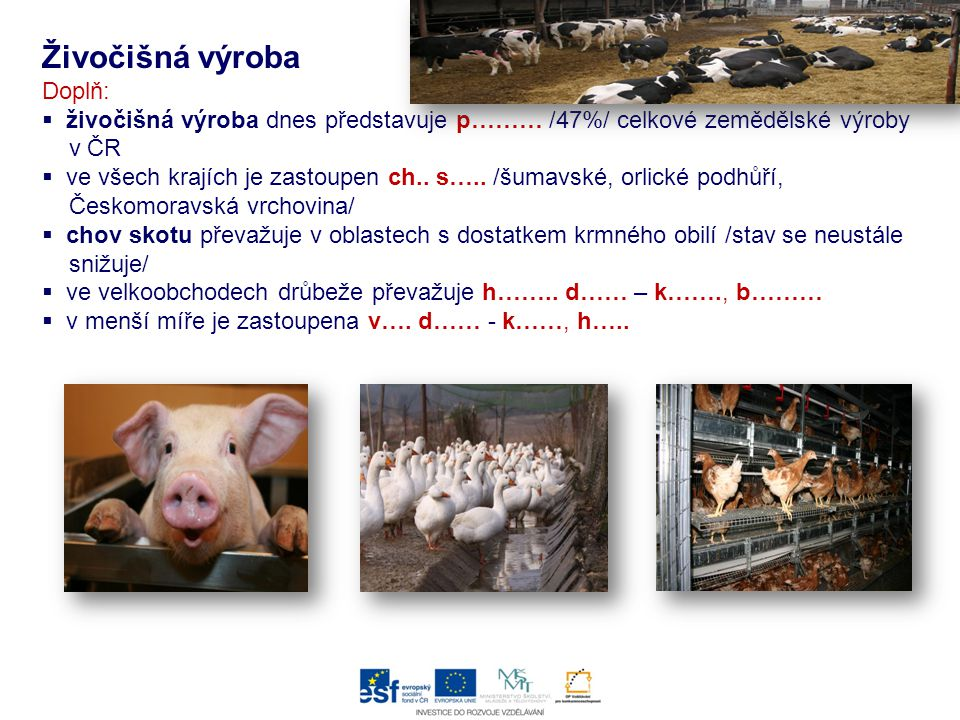 Živočišná výroba Doplň: