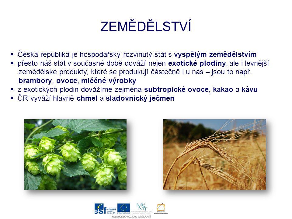 ZEMĚDĚLSTVÍ Česká republika je hospodářsky rozvinutý stát s vyspělým zemědělstvím.