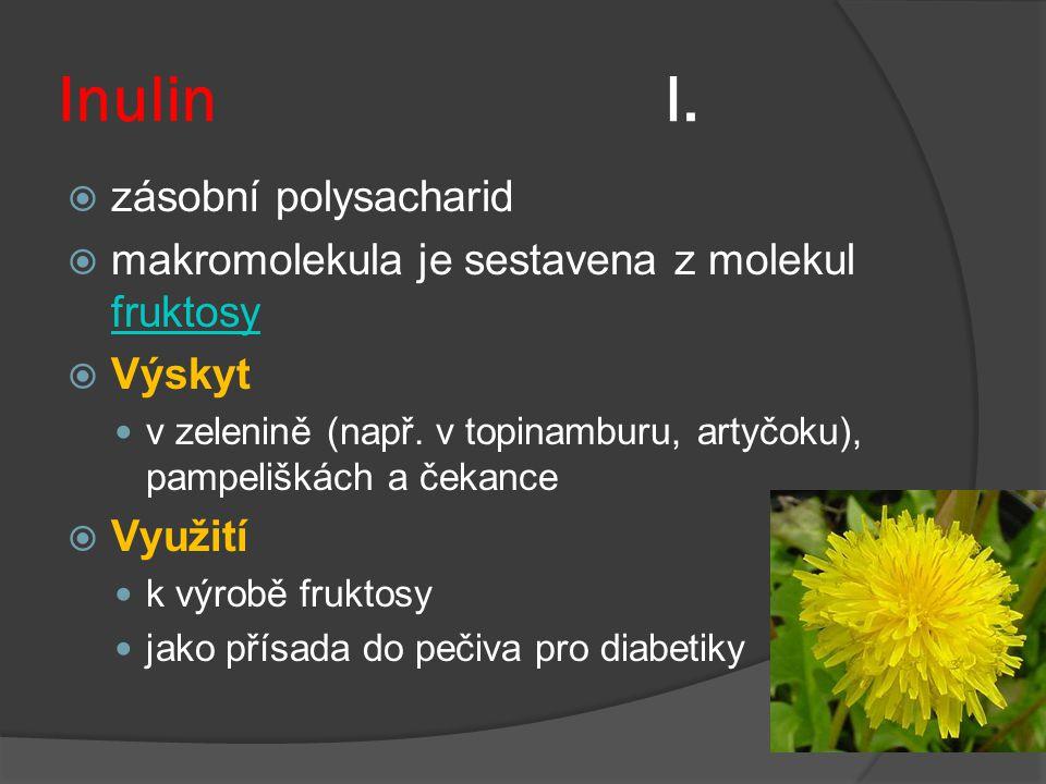 Inulin I. zásobní polysacharid