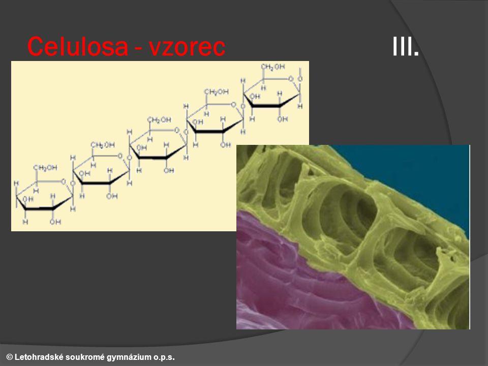 Celulosa - vzorec III. © Letohradské soukromé gymnázium o.p.s.