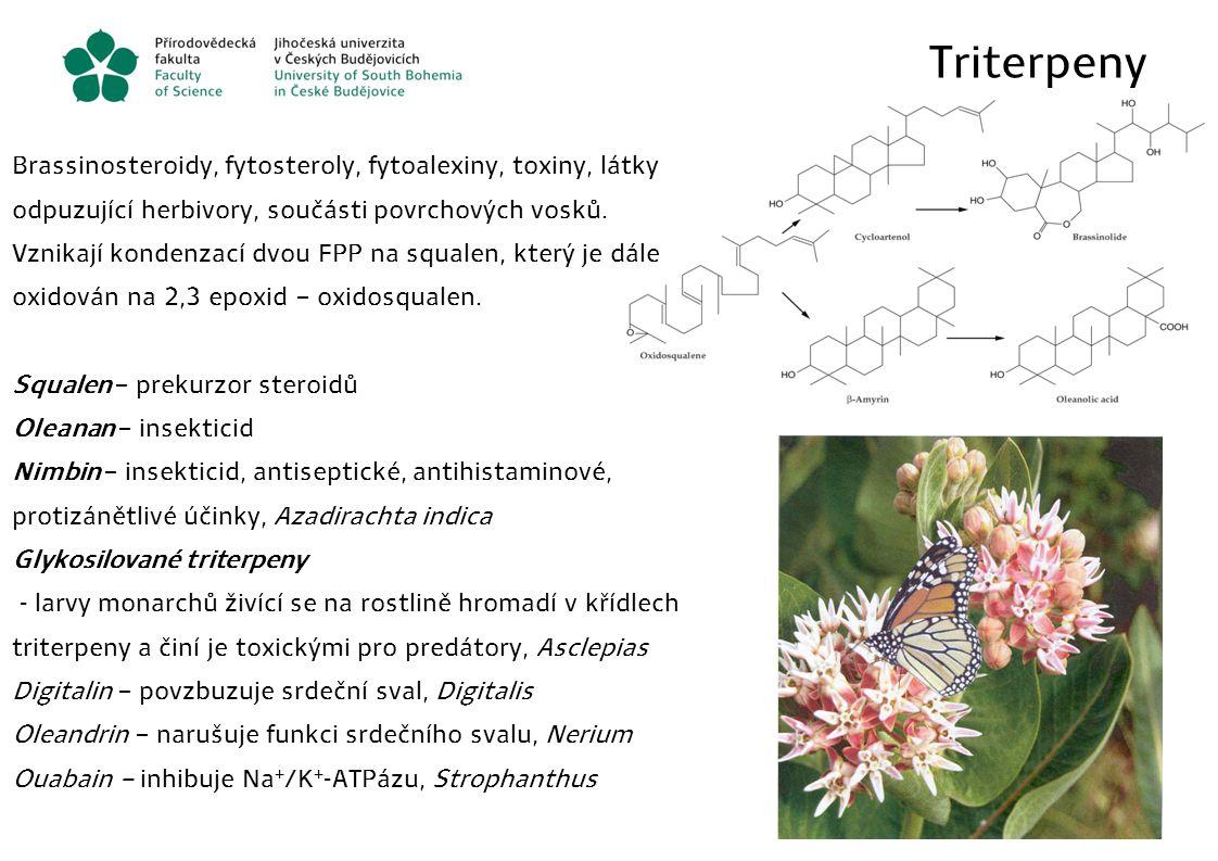 Triterpeny Brassinosteroidy, fytosteroly, fytoalexiny, toxiny, látky odpuzující herbivory, součásti povrchových vosků.