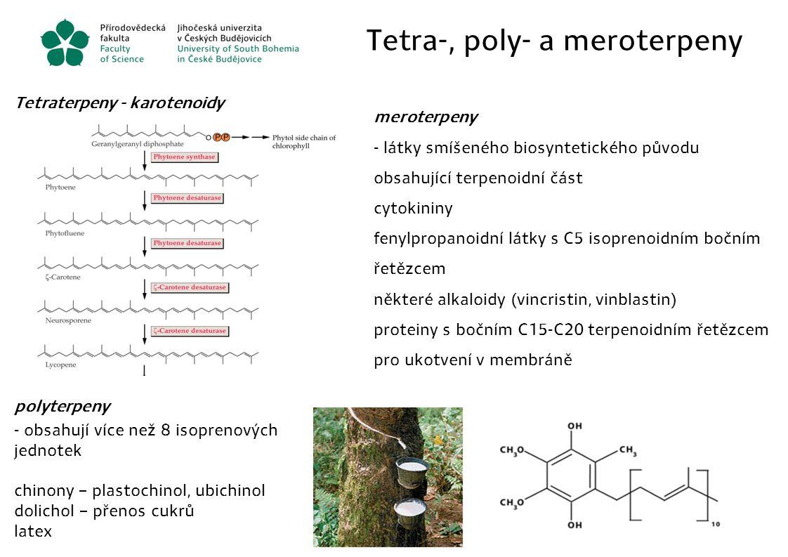 Tetra-, poly- a meroterpeny