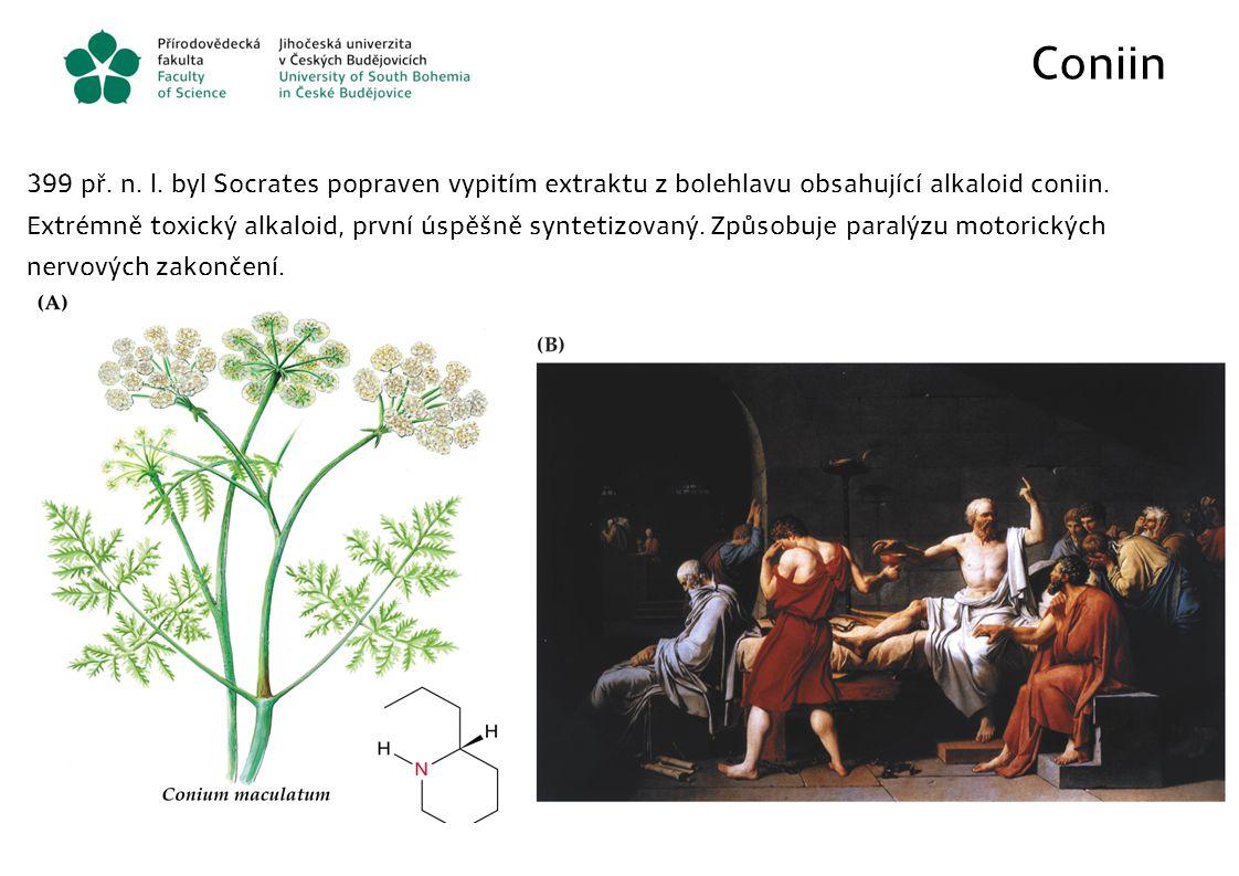 Coniin 399 př. n. l. byl Socrates popraven vypitím extraktu z bolehlavu obsahující alkaloid coniin.