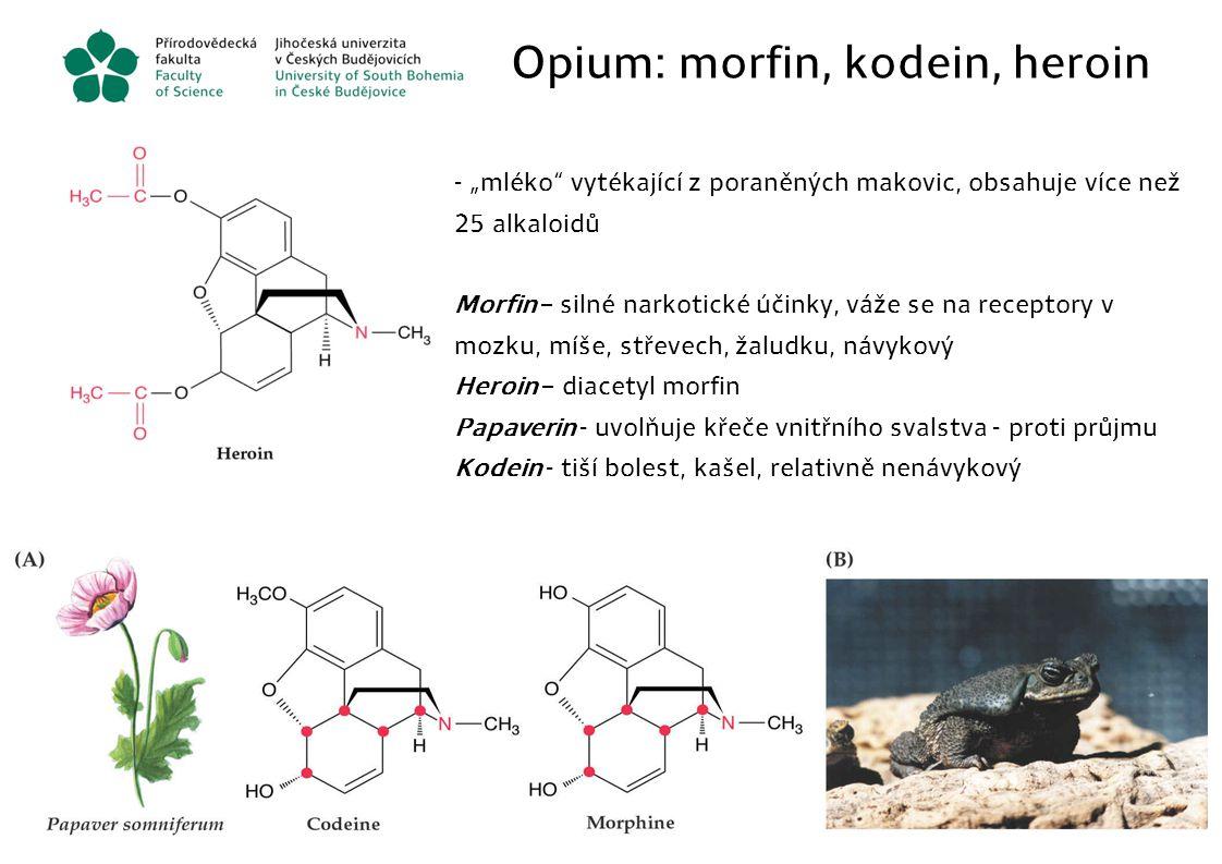 Opium: morfin, kodein, heroin