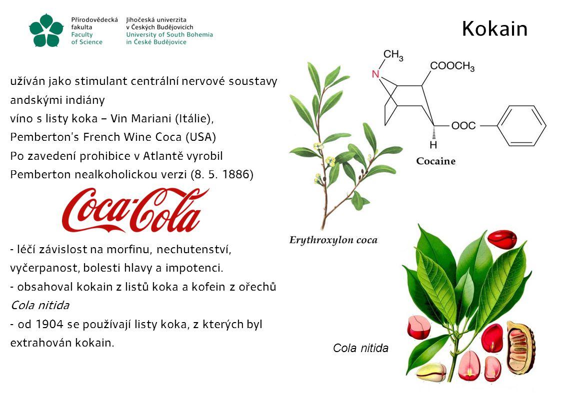Kokain užíván jako stimulant centrální nervové soustavy andskými indiány.