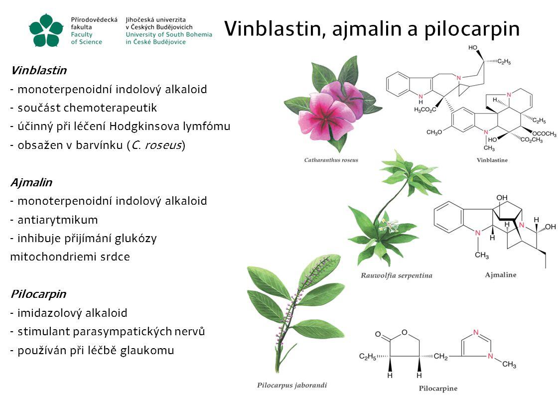 Vinblastin, ajmalin a pilocarpin