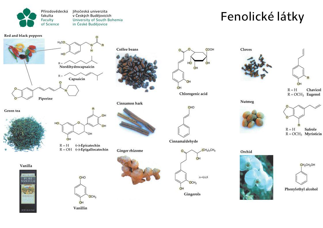 Fenolické látky í