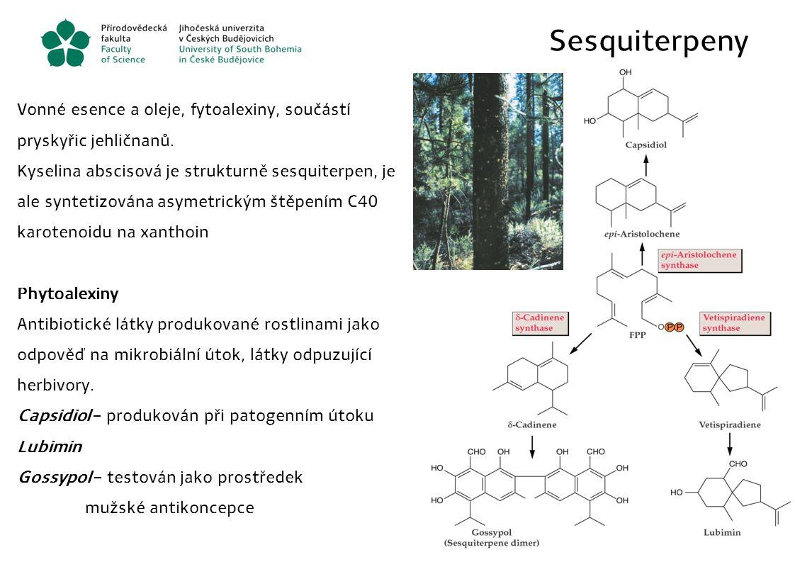 Sesquiterpeny Vonné esence a oleje, fytoalexiny, součástí pryskyřic jehličnanů.