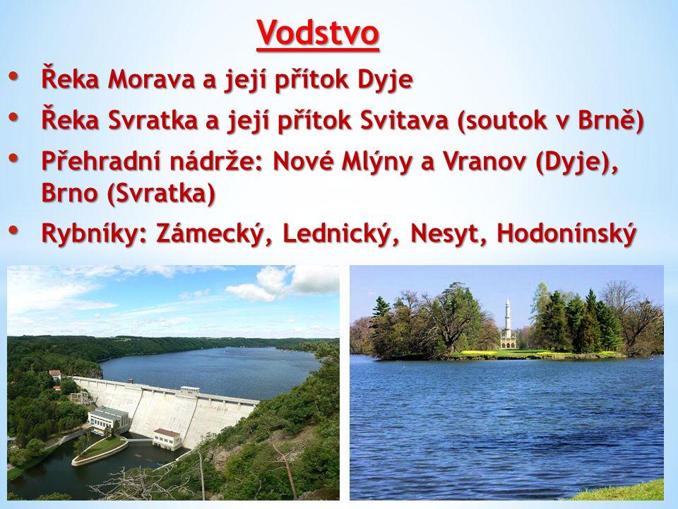 Vodstvo Řeka Morava a její přítok Dyje