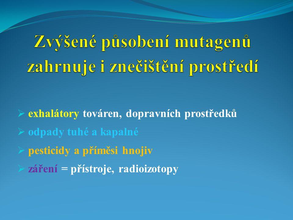 Zvýšené působení mutagenů zahrnuje i znečištění prostředí