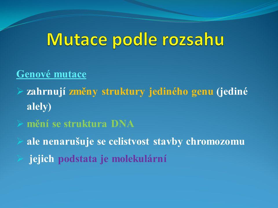 Mutace podle rozsahu Genové mutace