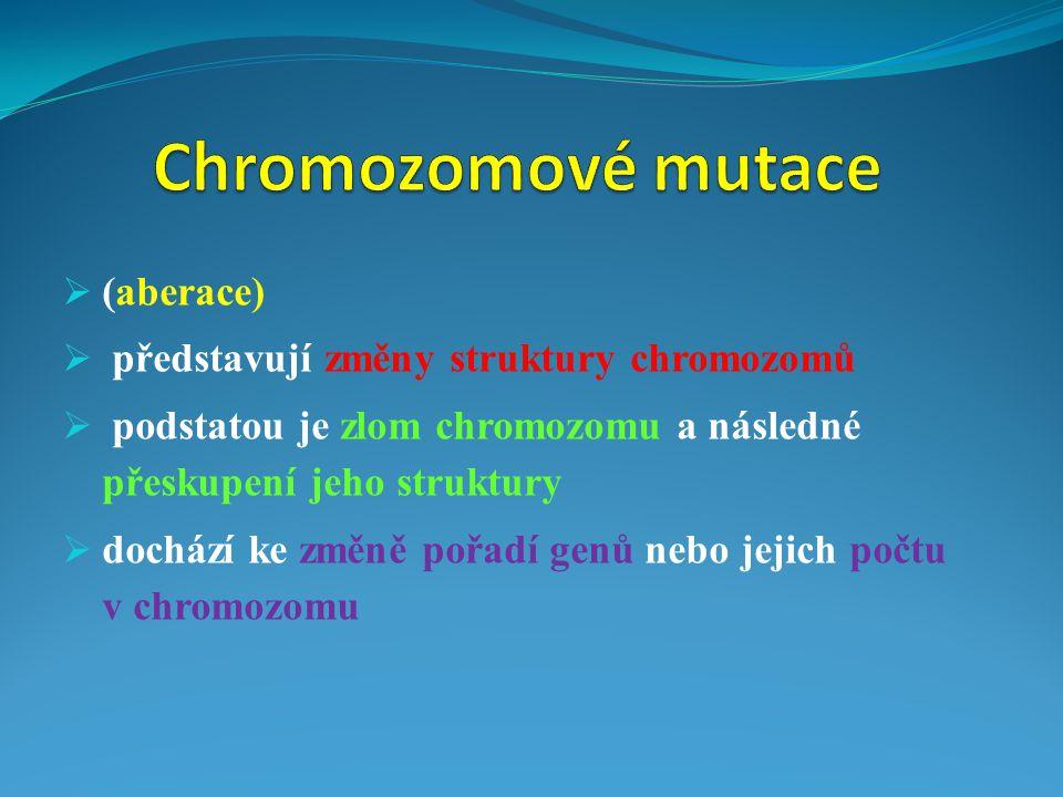 Chromozomové mutace (aberace) představují změny struktury chromozomů