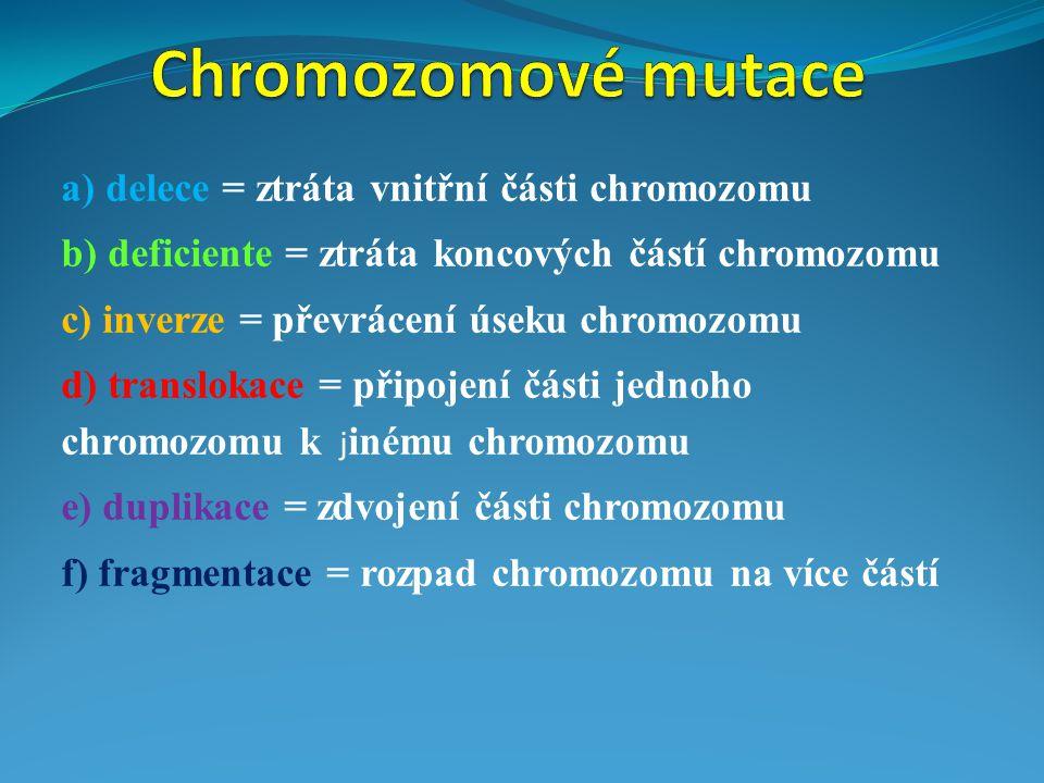 Chromozomové mutace a) delece = ztráta vnitřní části chromozomu