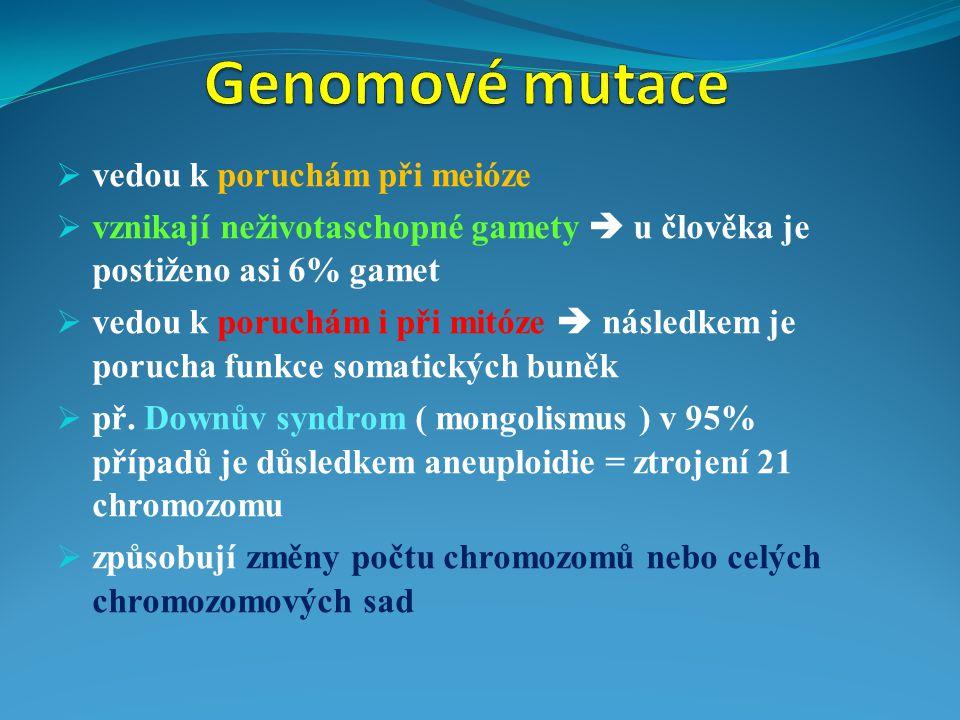 Genomové mutace vedou k poruchám při meióze