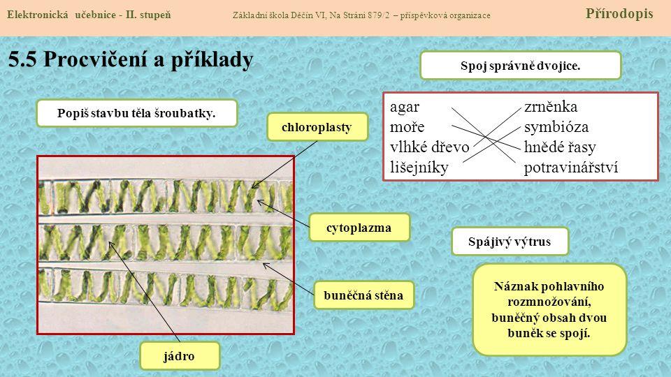 5.5 Procvičení a příklady agar zrněnka moře symbióza