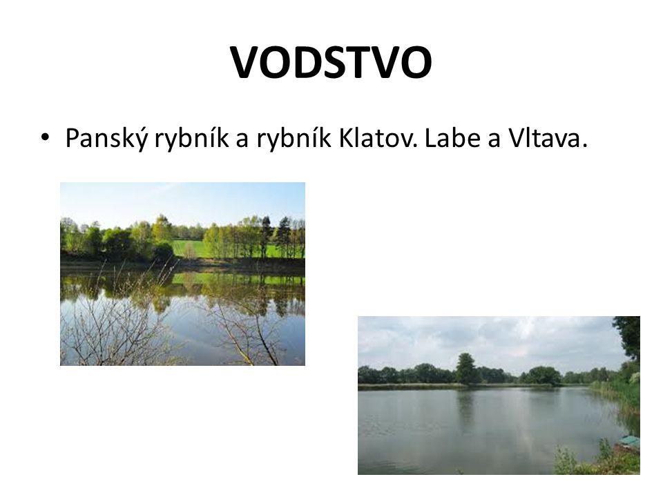 VODSTVO Panský rybník a rybník Klatov. Labe a Vltava.