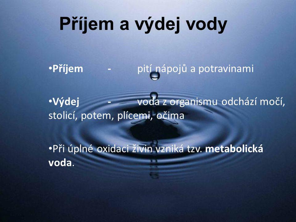 Příjem a výdej vody Příjem - pití nápojů a potravinami
