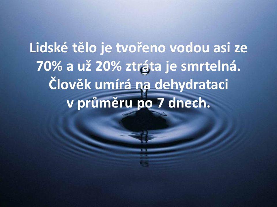 Lidské tělo je tvořeno vodou asi ze 70% a už 20% ztráta je smrtelná