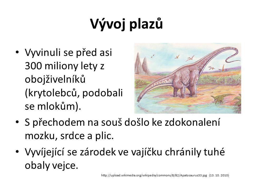 Vývoj plazů Vyvinuli se před asi 300 miliony lety z obojživelníků (krytolebců, podobali se mlokům).
