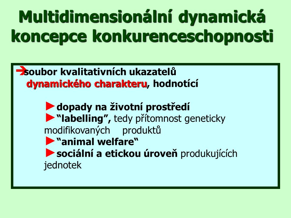 Multidimensionální dynamická koncepce konkurenceschopnosti