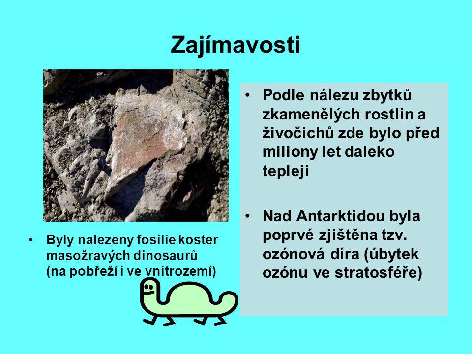 Zajímavosti Podle nálezu zbytků zkamenělých rostlin a živočichů zde bylo před miliony let daleko tepleji.
