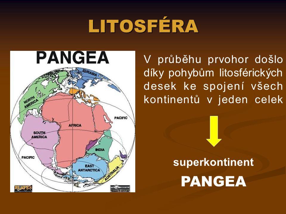 LITOSFÉRA V průběhu prvohor došlo díky pohybům litosférických desek ke spojení všech kontinentů v jeden celek.