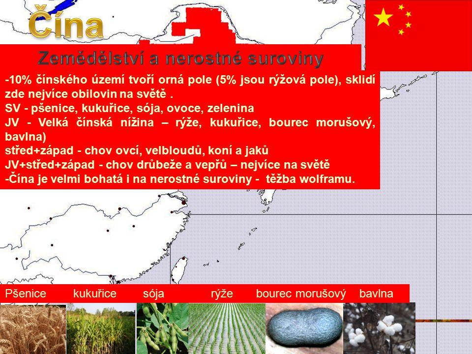 Zemědělství a nerostné suroviny