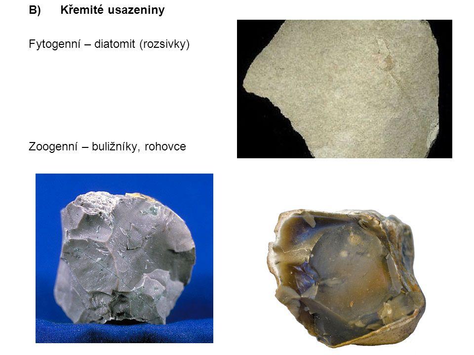 Křemité usazeniny Fytogenní – diatomit (rozsivky) Zoogenní – buližníky, rohovce