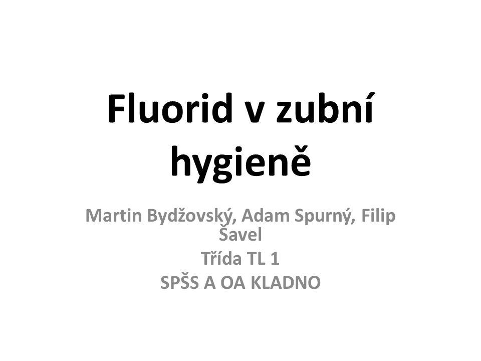 Fluorid v zubní hygieně