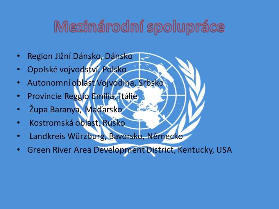 Mezinárodní spolupráce