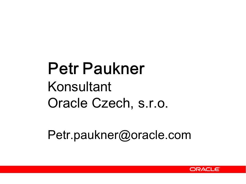 Petr Paukner Konsultant